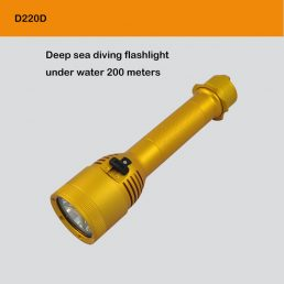 Deep-Sea Diving Flashlight